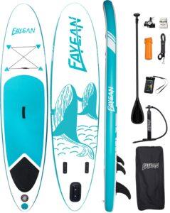 funwater_ballena_azul_tabla_paddle_surf_sup_economicas_dotshio_todos_los_complementos_todos_los_niveles_principiantes_set_valvula